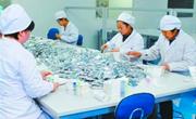 中国药都冲刺年销200亿