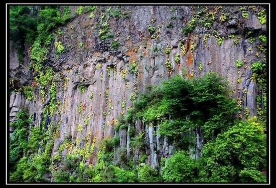 玄武岩柱林
