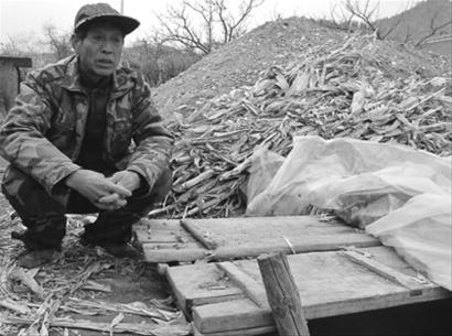在葫芦岛市建昌县养马甸子乡大杨树沟村,村民付振奎特意挖个了地窖