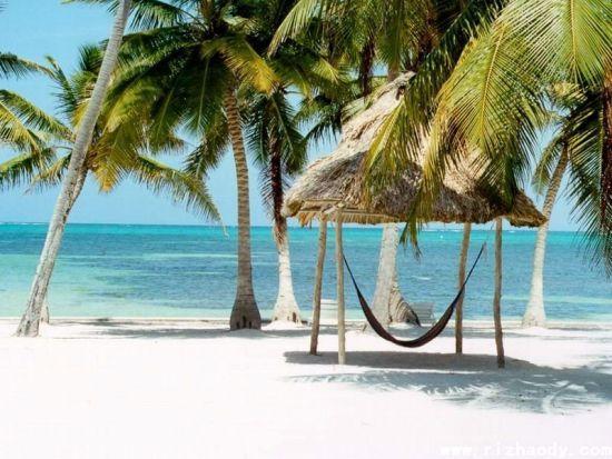 下载海南岛三亚椰树风景图片