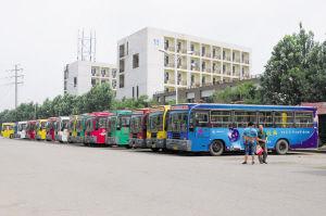 公交集中停放区