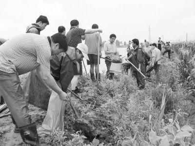 兰店乡组织干部和大坝施工方进行抢险。