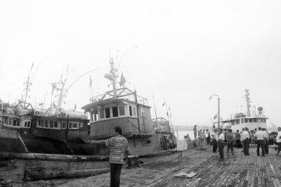 有关部门将严处非法捕捞渔船