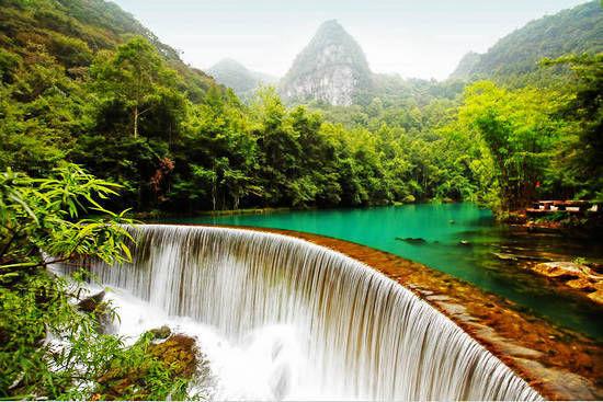 新浪旅游配图:最美的森林 摄影:小吉