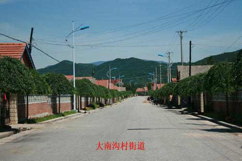 大南沟村街道