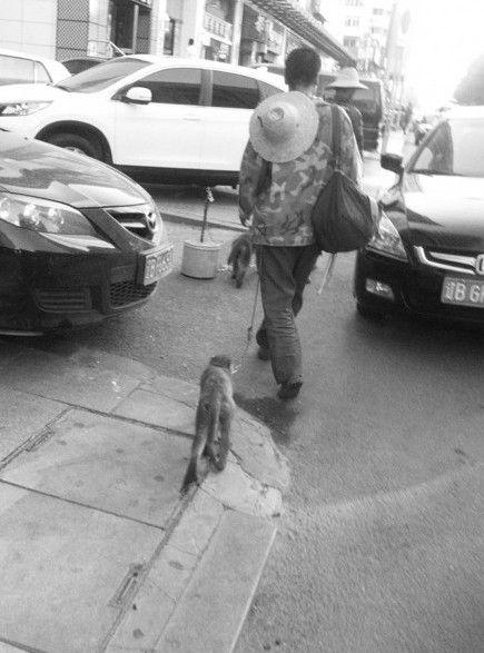 男子让猴子向路人索钱。