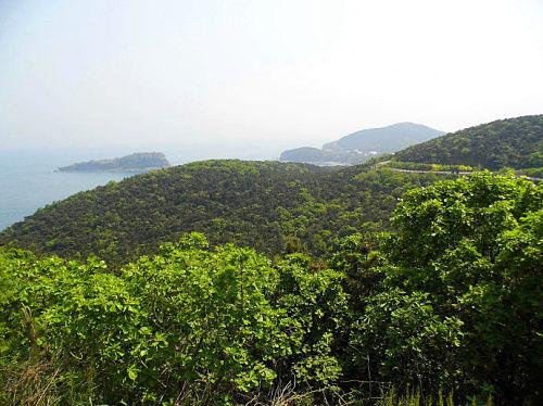 滨海路美景