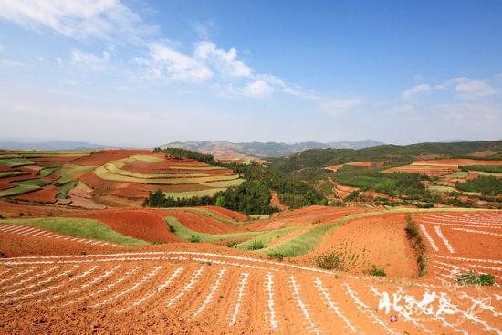 新浪旅游配图:神奇的自然 摄影:北京老夏