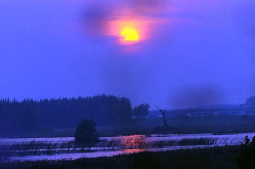 库区湿地日落