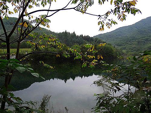 绿石谷美景
