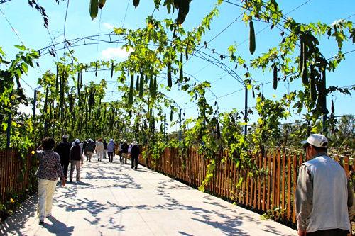 月牙湾湿地公园