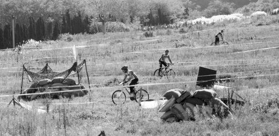选手们在国际标准赛道上展开比赛。