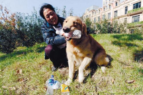 """宋大姐和爱捡瓶子的金毛犬""""熊熊"""""""