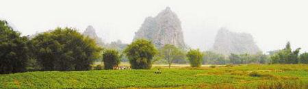 怀集世外桃源村秀美的自然风光是长寿养生的最主要原因