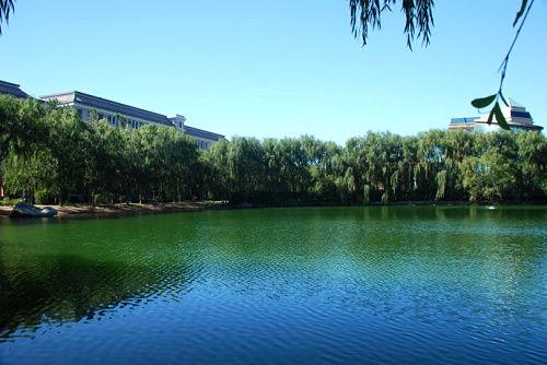 渤海大学秋景 不可复制的人文环境 3图片