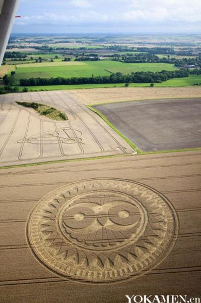 从飞机上鸟瞰巨大的猫头鹰造型麦田圈