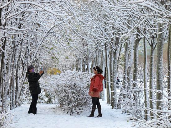 陶醉在雪景中的市民