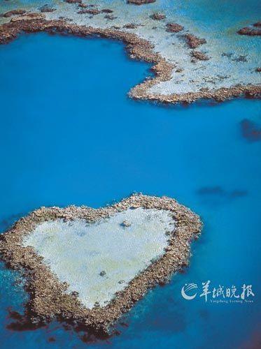大堡礁的心型礁石(昆士兰旅游局供图)