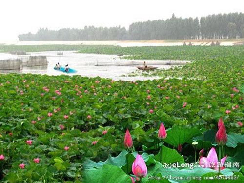 沈阳仙子湖