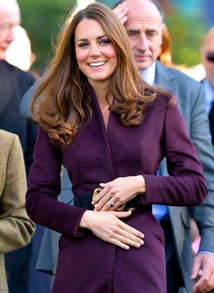 英国皇室正式宣布了凯特王妃怀孕的消息