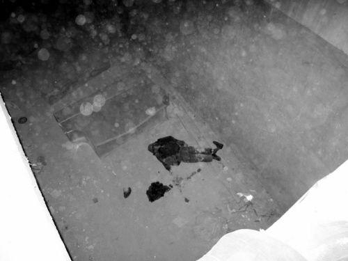 坑内的老人尸体