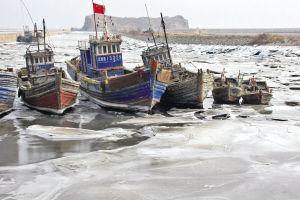 渔港内,部分没上岸的渔船冰冻在码头附近的浅滩上 ■本报记者 张墨寒 摄