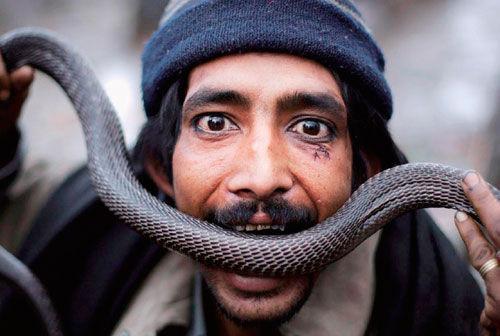 印度舞蛇表演