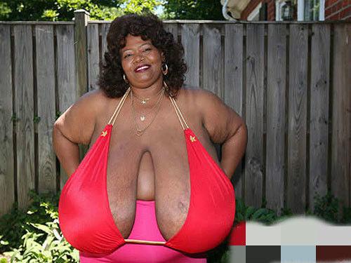 世界上最大的天然乳房