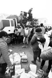 志愿者为狗买来水和食物。