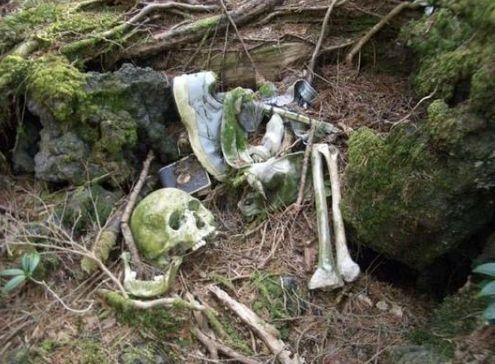 自杀者的尸骨漫山遍野偶尔就能发现一具