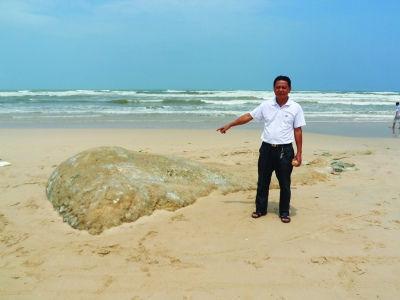 海滩发现不明生物尸体长约10米