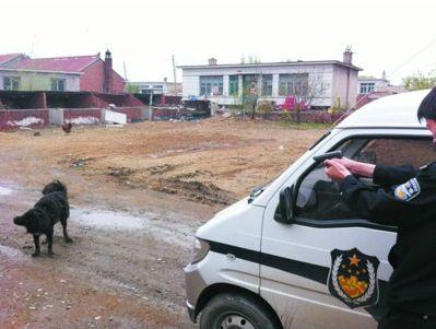 民警开枪将大狗击毙。警方供图