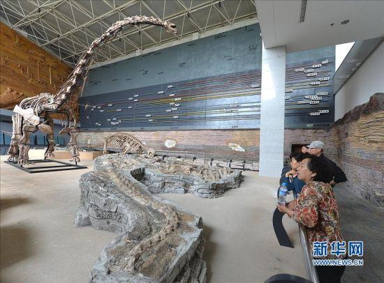 """5月13日,观众在辽宁朝阳鸟化石国家地质公园博物馆观赏""""辽宁巨龙""""化石(下)及复原品(左)"""