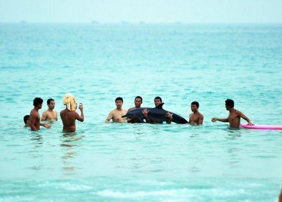 2013年6月16日,海南三亚大东海海滩附近,与搁浅海豚合影的游客和市民。