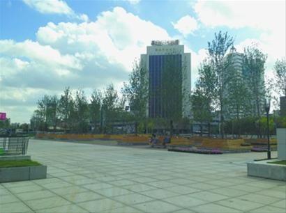 ◆在市府广场西侧,数十株高大的树木已经栽完,树池外侧由木板拼成,四周配有木质的座椅。 北国网、辽沈晚报记者 夏雪 摄