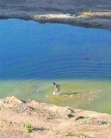 昨日,在沈阳铁西区某工地,一名男子裸泳吓坏附近居民。市民胡先生供图