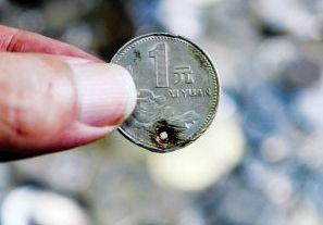 被打洞的硬币