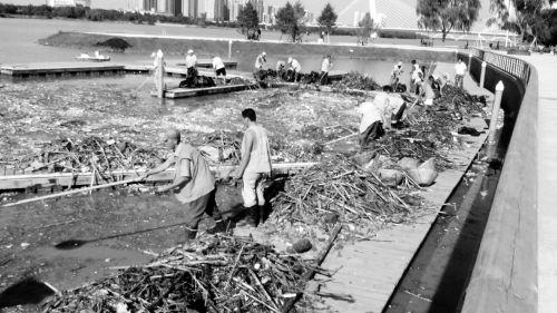 工作人员在清理浑河沈阳段的垃圾