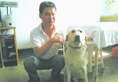 昨日,明星导盲犬回到盲人按摩师肖阳的身边,亲密的在一起,凯瑞是肖阳的眼睛。 北国网、辽沈晚报记者 徐刚 摄