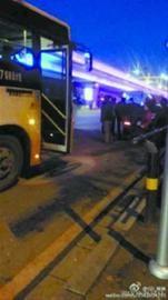 公交专用道里公交车正常等红灯