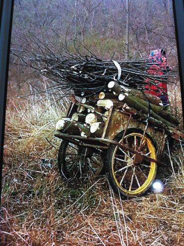 手推车上装满了树枝和树干。