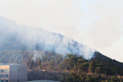 老虎滩附近的山上冒起了滚滚浓烟