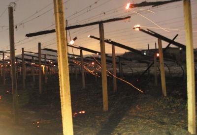 记者赶到现场时,大棚已被烧成空架子,局部还残留星星点点的火光。
