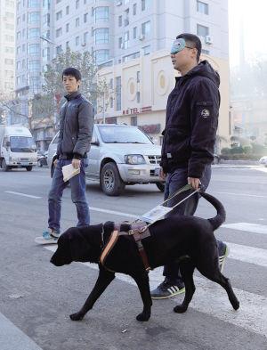 训导员戴眼罩模拟盲人带犬训练 基地供图