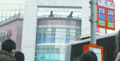 昨日下午,沈阳市和平区中山路一处楼房顶部两门大炮十分惹眼。