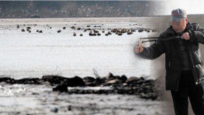男子弹射水边鸟群。