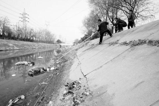 环卫工人正在清理河道