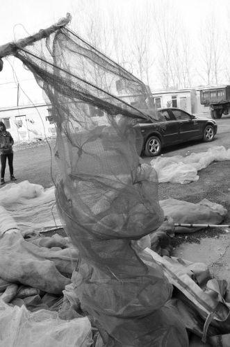 """""""石庙子家属楼""""下到处可看到渔网"""