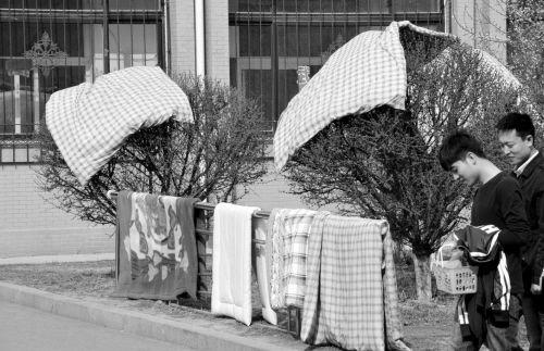 学生们把被子从卫生间搬到了室外 。