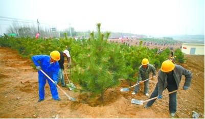 营口万人植树活动的主会场——鲅鱼圈区沙河绿化带公仆林植树点-营